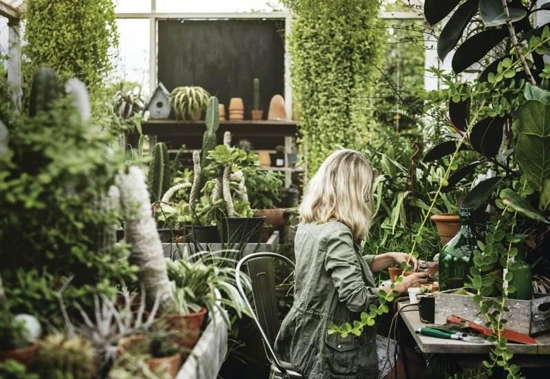 žena biljke