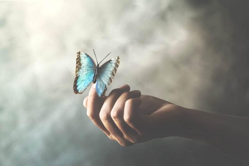 žena,mentalno zdravlje, leptir